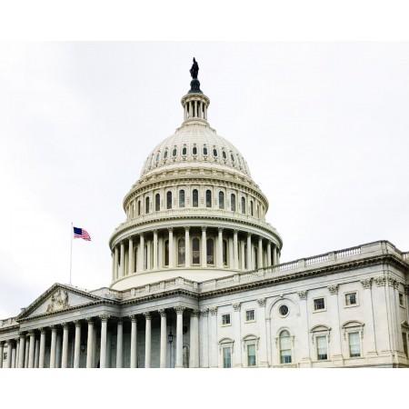 AP® US Government & Politics